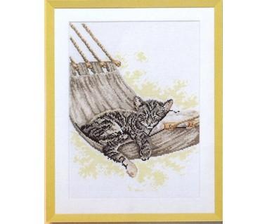 Kat in hangmat