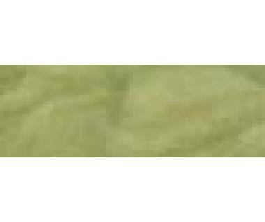 WW geelgroen 50gr